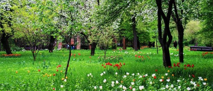 moscow beautiful parks