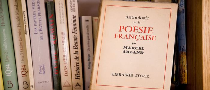 Travel to France from Home-What to Read?
