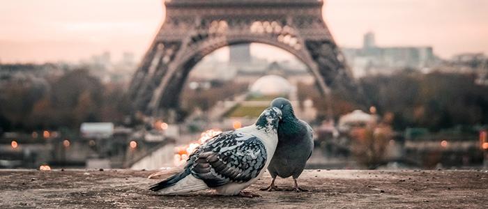 romantic holidays for couples - Paris