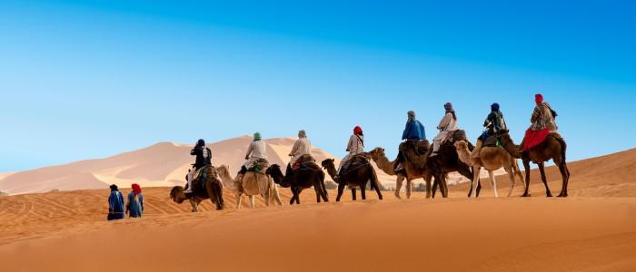 best Sahara Desert experiences: camel riding