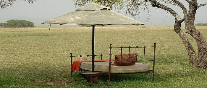 luxury safari in Africa: Travel in Style and Comfort
