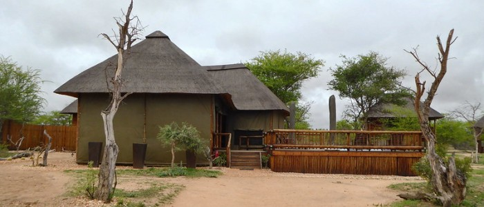 Top Destinations for Glamping in South Africa - kruger national park
