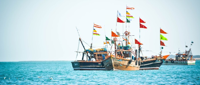 Things to do in India - Indian ocean sailing
