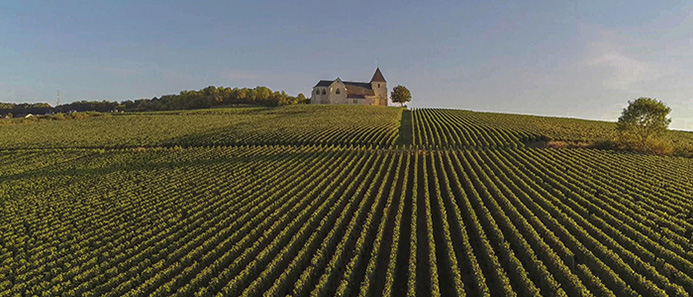 things to do in France - Champagne Region