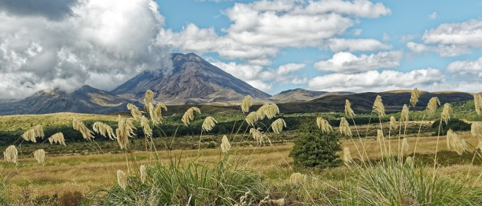 Things To Do In New Zealand - Tongariro National Park