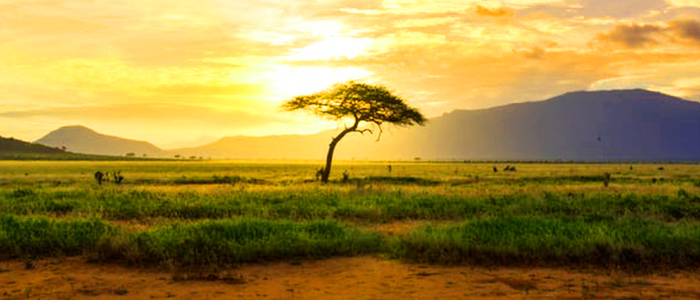 Mesmerizing African Landscape