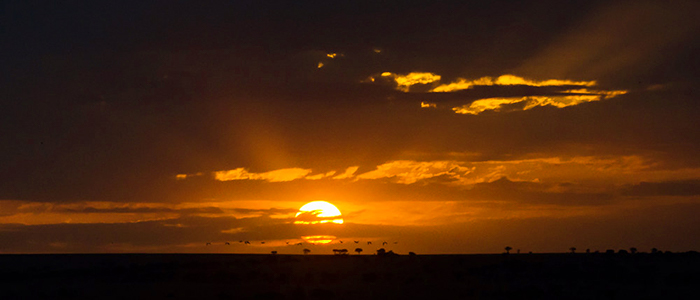 Mind blowing African Horizon