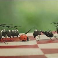 [Jeune Public] Minuscule - La vallée des fourmis perdues au Cinéma Lumière Fourmi