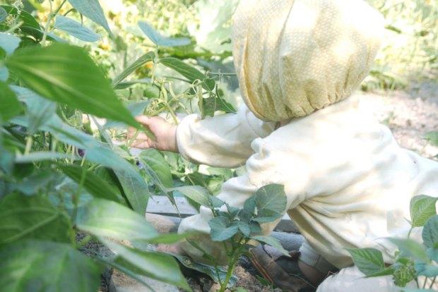 appolline-au-jardin2