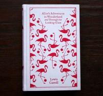Journal d'une Rapporteuse - Beaux Livres