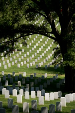 Memorial Day 2015 Arlington National Cemetery Jordan Bush Photography_18