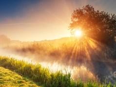 Sonne (Foto: Von Creative Travel Projects/Shutterstock)