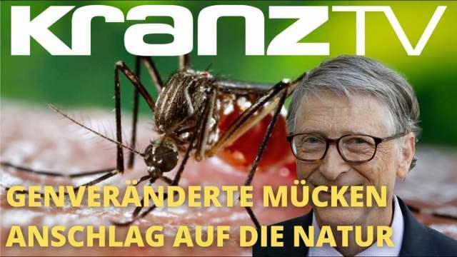 Bill Gates: Freisetzung genveränderter Moskitos   Wenn Unternehmen Gott spielen; Bild: Startbild Youtube