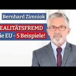 So realitätsfremd ist die EU – 5 Beispiele!   B. Zimniok; Bild: Startbild Youtubevideo