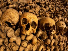 Gestapelte Knochen; Bild: Shutterstock