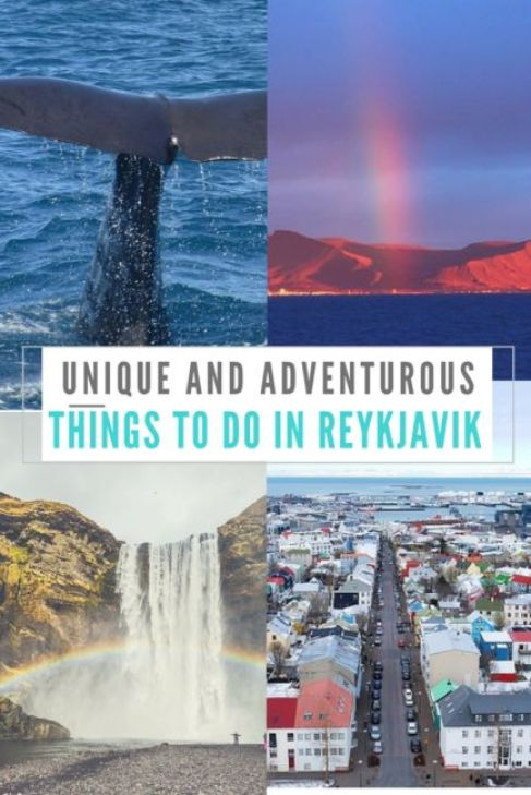 unique things to do in reykjavik