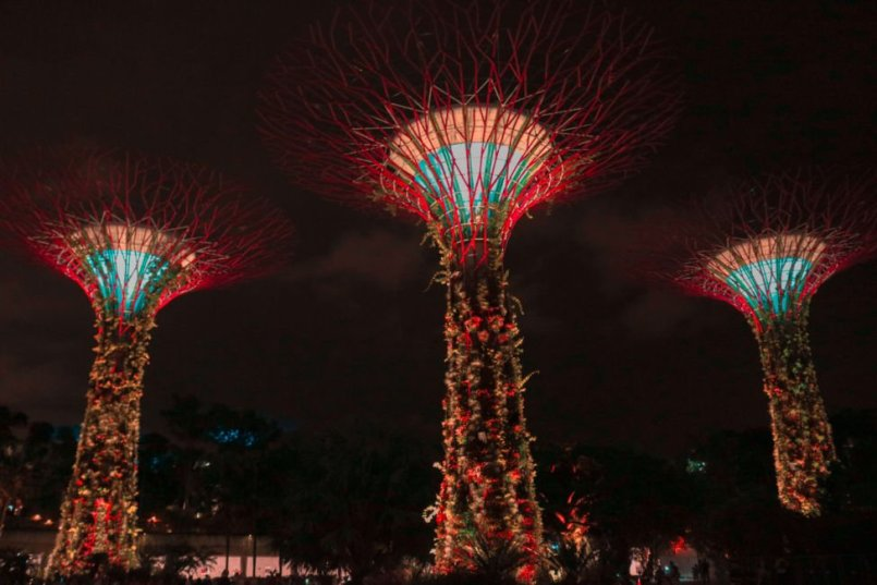 gardens by the bay lightshow