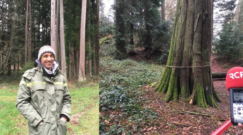 RCF Limousin : Nos Forêts
