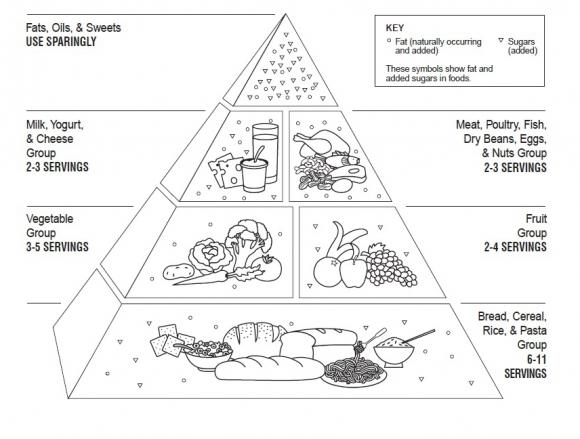 la pyramide alimentaire permanence et