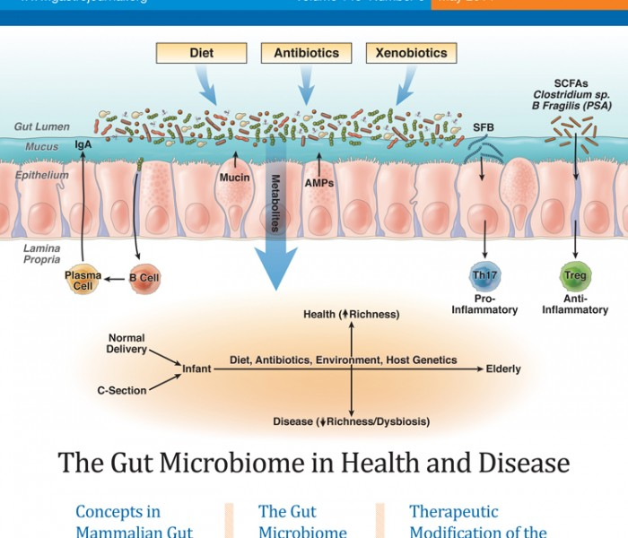 Special Issue: The Gut Microbiome