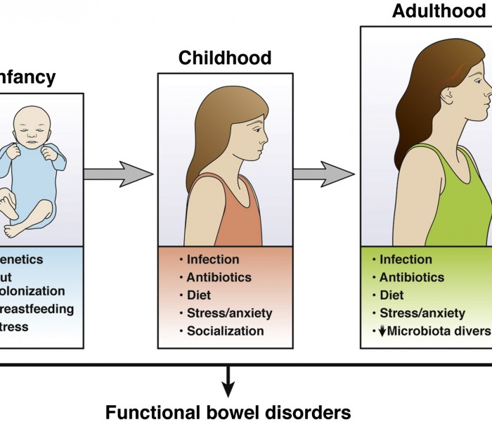 What are the Long-Term Effects of Gastrointestinal Infections During Childhood?