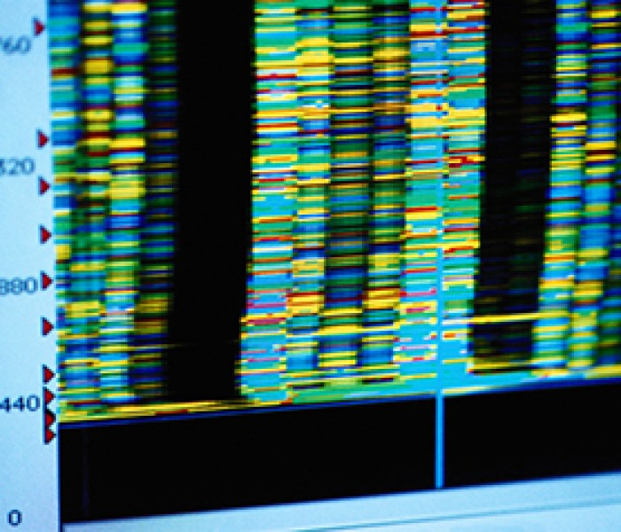 Genetic Analysis of Tumors Could Improve With Proper Controls