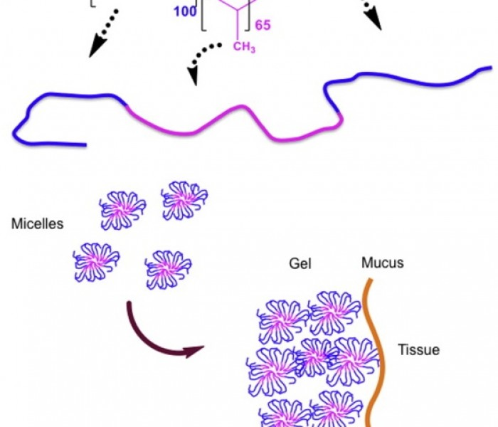 A Temperature-sensitive Gel For Topical Administration of Colitis Drugs
