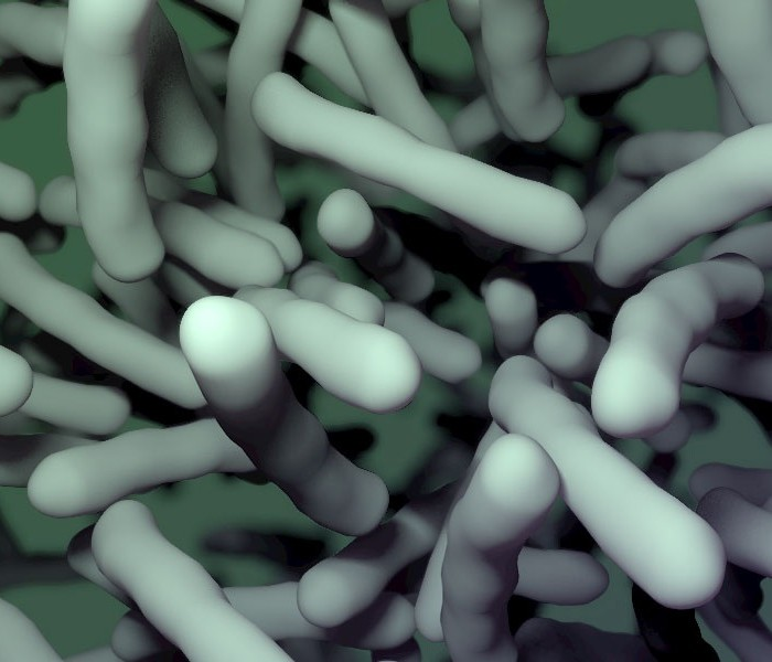 A Non-Antibiotic Against Clostridium difficile Infection