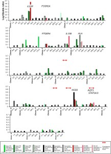 Comparison of log10 (ORs) at the risk alleles by chromosomal position (in Mb, Genome Build 37) between Caucasian (black), East Asian (green), and African American (red) loci for Crohn's diseaase (dark intensity), IBD (medium intensity) and ulcerative colitis (light intensity).