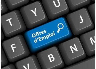 Offres d'emploi pour jeunes docteurs ou doctorants en français