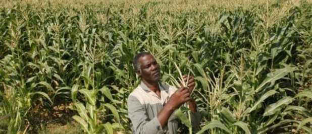 Appel à candidature LEAP-Agri partenariat entre l'UA l'UE