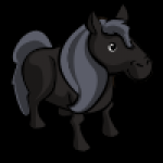 thumbs_animal_pony_swiss_icon