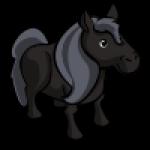thumbs_animal_pony_swiss_icon