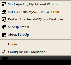 SurvUp Server Task Bar Options