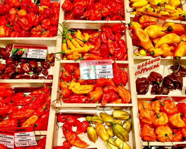 Hottest chillies in the world