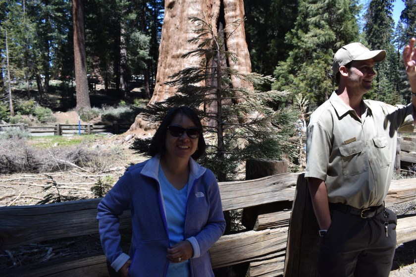 Blog-SSC_0568-1024x682 Sequoia National Park: Giants Standing Guard