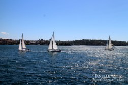 Sailboats in the harbour!