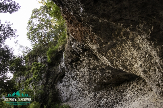 Kweebani Cave, Lamington National Park