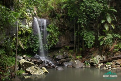 Curtis Falls, Gold Coast