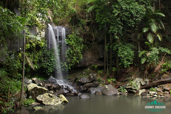 Curtis Falls, Mt Tamborine, Gold Coast