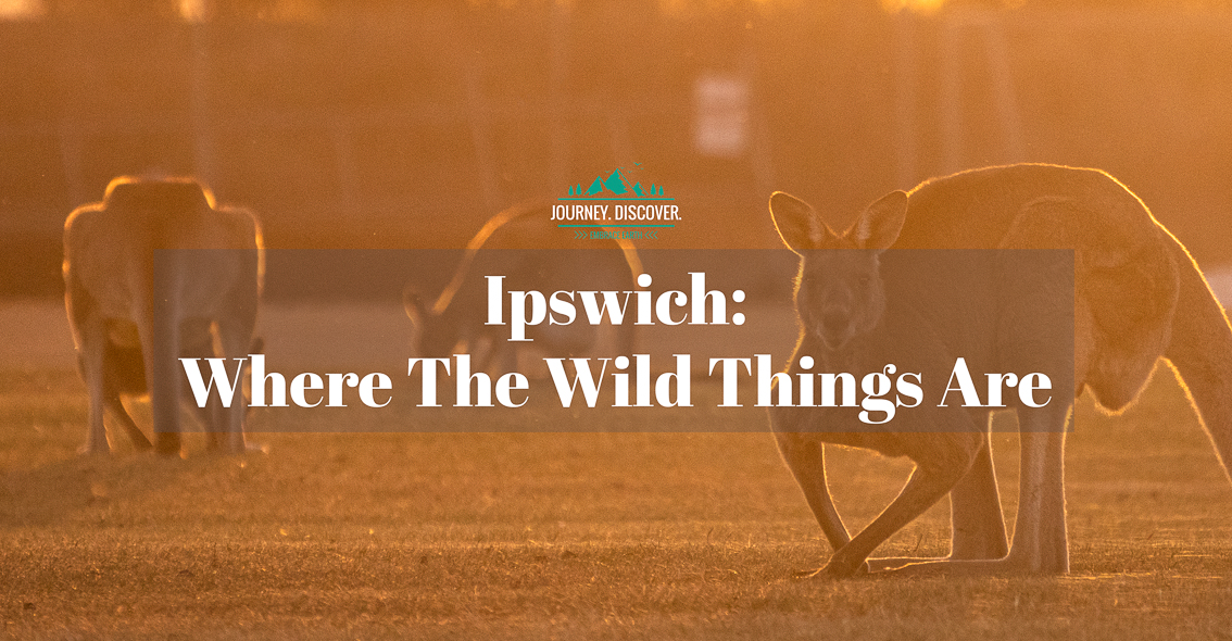 Ipswich - Where The Wild Things Are