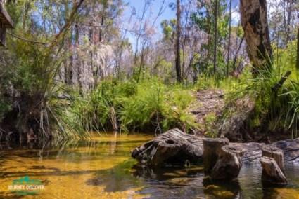 Searys Creek