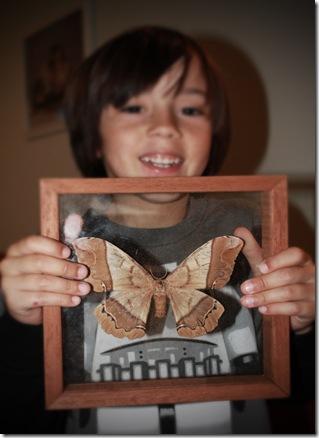 4727 CR Moth