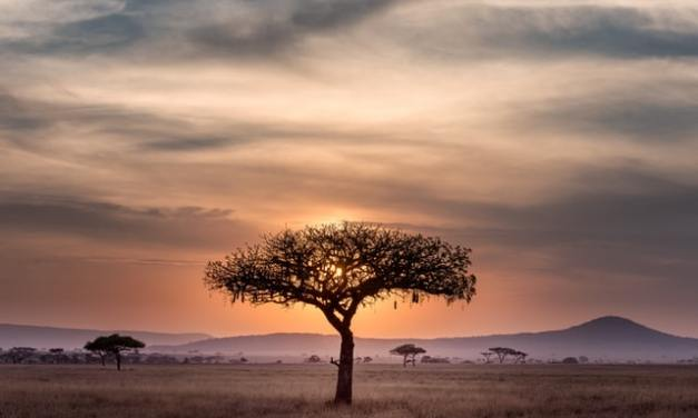 Places to Visit in Africa | Guide for Travel to Africa