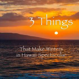 3ThingsWinterButton