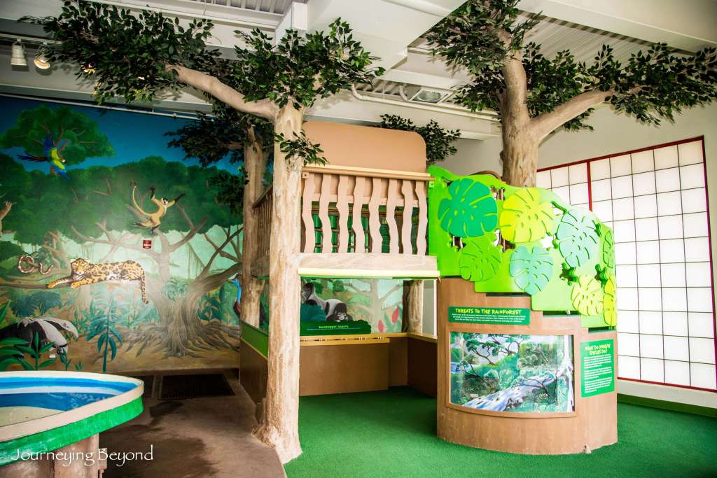 Children's Discovery Center-13