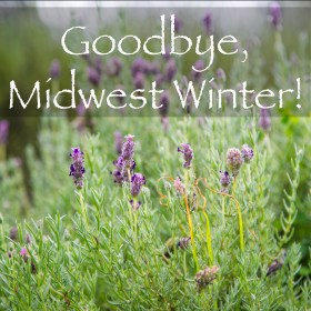 MidwestWinterSquare
