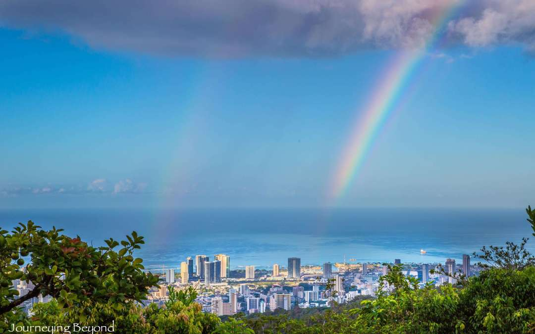 Hike the Manoa Cliff Trail