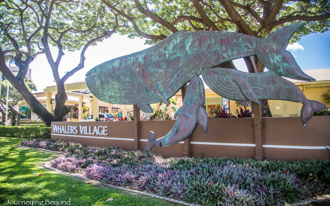 Discover Lahaina's Whaling History