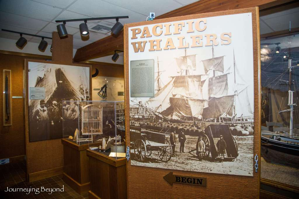 Whalers Village Museum-4